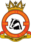 1239 (Broxbourne & Hoddesdon) Air Training Corps (ATC)/Air Cadets Squadron badge. Click to go to the 1239 (Broxbourne & Hoddesdon) Air Training Corps (ATC)/Air Cadets homepage