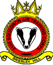 2156 (Brierley Hill) Air Training Corps (ATC)/Air Cadets Squadron badge. Click to go to the 2156 (Brierley Hill) Air Training Corps (ATC)/Air Cadets homepage