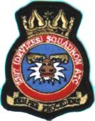2397 (Devizes) Air Training Corps (ATC)/Air Cadets Squadron badge. Click to go to the 2397 (Devizes) Air Training Corps (ATC)/Air Cadets homepage
