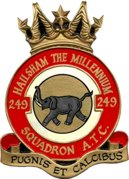 249 (Hailsham) Air Training Corps (ATC)/Air Cadets Squadron badge. Click to go to the 249 (Hailsham) Air Training Corps (ATC)/Air Cadets homepage