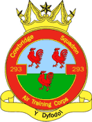 293 (Cowbridge) Air Training Corps (ATC)/Air Cadets Squadron badge. Click to go to the 293 (Cowbridge) Air Training Corps (ATC)/Air Cadets homepage