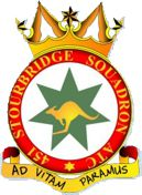 451 (Stourbridge) Air Training Corps (ATC)/Air Cadets Squadron badge. Click to go to the 451 (Stourbridge) Air Training Corps (ATC)/Air Cadets homepage