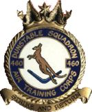 460 (Dunstable) Air Training Corps (ATC)/Air Cadets Squadron badge. Click to go to the 460 (Dunstable) Air Training Corps (ATC)/Air Cadets homepage