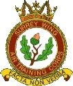 Surrey Wing Air Training Corps (ATC)/Air Cadets Wing badge. Click to go to the Surrey Wing Air Training Corps (ATC)/Air Cadets Wing homepage